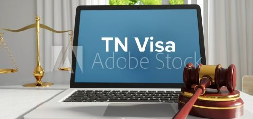 TN Visa – Law, Judgment, Web. Laptop in the office with term on the screen. Hammer, Libra, Lawyer.